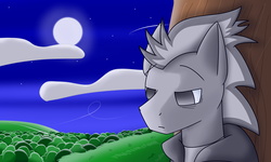 Size: 5000x3000 | Tagged: artist:silver dash, clothes, cloud, face, forest, head, hoodie, moon, night, oc, oc only, oc:silver dash, pegasus, pony, sad, safe, tree