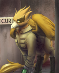 Size: 540x669 | Tagged: artist:blvckmagic, fallout equestria, griffon, griffon oc, military uniform, oc, oc:shady night, pipbuck, safe