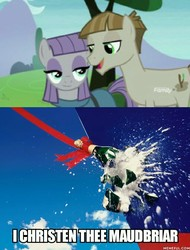 Size: 700x919   Tagged: safe, edit, edited screencap, screencap, maud pie, mudbriar, earth pony, pony, the maud couple, alcohol, breaking glass, champagne, christening, female, male, mare, maudbriar, shipping, smiling, stallion, straight, when she smiles, wine