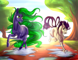 Size: 1024x785   Tagged: safe, artist:mylittleasspit, high heel, mane-iac, earth pony, pony, commission, female, heel-iac, lesbian, looking at each other, mare, missing cutie mark, puddle, running, shipping, splashing
