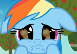 Size: 1023x720 | Tagged: applejack, apple tree, close-up, cropped, cute, daaaaaaaaaaaw, dashabetes, dhx is trying to murder us, discovery family logo, earth pony, female, floppy ears, grannies gone wild, hasbro is trying to murder us, hnnng, mare, pegasus, pony, puppy dog eyes, rainbow dash, rainbow dash is best facemaker, reflection, sad, sadorable, safe, screencap, tree, wavy mouth, weapons-grade cute, wide eyes