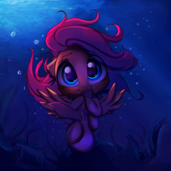 Size: 3000x3000 | Tagged: safe, artist:miokomata, fluttershy, seapony (g4), biting, blushing, bubble, cute, cute little fangs, fangs, female, freckles, looking at you, mare, miokomata is trying to murder us, seaponified, seapony fluttershy, shyabetes, solo, species swap, spread wings, tail bite, underwater, water, weapons-grade cute, wings