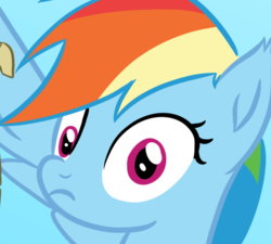 Size: 813x733 | Tagged: safe, artist:saphire-systrine, edit, edited screencap, screencap, rainbow dash, grannies gone wild, cropped, female, looking at you, message, rainbow dash reading a scroll, scroll, shocked, solo