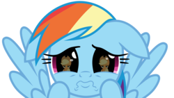 Size: 5031x2833 | Tagged: applejack, artist:jhayarr23, cute, daaaaaaaaaaaw, dashabetes, dhx is trying to murder us, eye reflection, floppy ears, grannies gone wild, hnnng, puppy dog eyes, rainbow dash, rainbow dash is best facemaker, reflection, sad, safe, simple background, transparent background, unamused, vector, weapons-grade cute