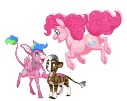 Size: 2500x2000 | Tagged: safe, artist:jackiebloom, pinkie pie, oc, oc:disco inferno, oc:kinyume, earth pony, hybrid, mule, pony, zony, blaze (coat marking), colt, female, filly, high res, leonine tail, magical lesbian spawn, male, mare, offspring, parent:daring do, parent:pinkie pie, parent:zecora, parents:daringcora, pegamule, simple background, socks (coat marking), transparent background