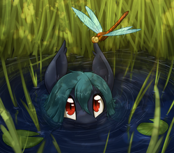 Size: 1679x1480 | Tagged: artist:otakuap, bat pony, bat pony oc, cute, dragonfly, oc, oc only, reeds, safe, slit eyes, solo, water