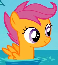 Size: 462x519 | Tagged: safe, screencap, scootaloo, pegasus, pony, surf and/or turf, cropped, cute, cutealoo, female, filly, pegaduck, solo, spread wings, water, wings