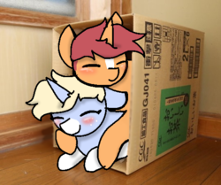 Size: 540x451 | Tagged: artist:nootaz, box, cute, duo, gametaz, irl, nootabetes, oc, oc:game guard, oc:nootaz, photo, ponies in real life, pony, pony in a box, safe, snuggling
