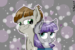 Size: 3000x2000   Tagged: safe, artist:viejillox64art, maud pie, mudbriar, earth pony, pony, the maud couple, canon ship, cheek fluff, chest fluff, ear fluff, female, heart, heart eyes, love, male, maudbriar, shipping, smiling, straight, when she smiles, wingding eyes