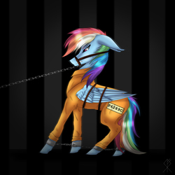 Size: 3000x3000   Tagged: safe, artist:charliegray99, rainbow dash, pony, bound wings, bridle, chains, clothes, cuffs, female, gritted teeth, jail, never doubt rainbowdash69's involvement, prison, prison outfit, prisoner, prisoner rd, sad, shackles, solo, tack