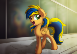 Size: 1500x1056 | Tagged: artist:sharemyshipment, city, fangs, female, heterochromia, highrise building, hybrid, oc, oc:hope shatter, oc only, pegasus, pony, safe, solo, teenager