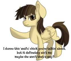 Size: 3500x3000 | Tagged: safe, artist:rainbowtashie, wild fire, pegasus, pony, background pony, dialogue, pointing, simple background, solo, talking to viewer, text, transparent background, tsundere, waifu