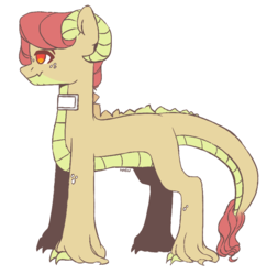 Size: 783x807 | Tagged: safe, artist:harusocoma, oc, oc:alexander, dracony, hybrid, interspecies offspring, male, offspring, parent:apple bloom, parent:spike, parents:spikebloom, simple background, solo, white background