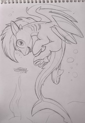 Size: 2212x3170 | Tagged: safe, artist:airfly-pony, oc, oc only, oc:shark bite, original species, shark, shark pony, back, cute, design, design a pony, fins, gills, lineart, long tail, looking at you, male, nostrils, ocean, rcf community, shark tail, shark teeth, sharp ears, sharp teeth, short hair, short mane, smiling, solo, stallion, strange pose, swimming, teeth, underhoof, wings