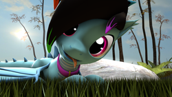 Size: 1280x720 | Tagged: 3d, artist:rdashflare, collar, dracony, grass, hybrid, looking at you, lying down, oc, oc only, oc:rdash, safe, source filmmaker, tongue out