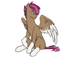 Size: 1000x809 | Tagged: safe, artist:pikokko, oc, oc only, oc:swallow, pegasus, pony, blank flank, colored wings, colored wingtips, male, offspring, parent:pipsqueak, parent:scootaloo, parents:scootasqueak, simple background, socks (coat marking), solo, stallion, white background