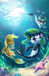 Size: 900x1391 | Tagged: safe, artist:dawnfire, oc, oc only, oc:front page, oc:marina (efnw), oc:mocha sunrise, orca pony, original species, seapony (g4), starfish, cute, everfree northwest, female, looking up, mare, ocbetes, seaponified, seashell, smiling, species swap, underwater, water, whale pony