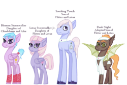 Size: 1024x683 | Tagged: safe, artist:magicandmysterygal, oc, oc only, oc:blossom stormwalker, oc:dusk night, oc:lotus stormwalker jr, oc:soothing touch, bat pony, earth pony, pegasus, pony, adopted, adopted offspring, description is relevant, female, hoof wraps, magical lesbian spawn, male, mare, offspring, parent:aloe, parent:cloudchaser, parent:flitter, parent:lotus blossom, simple background, stallion, story in the source, story included, tail wrap, towel, transparent background, unshorn fetlocks