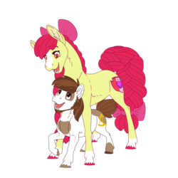 Size: 3000x3000 | Tagged: safe, artist:jackiebloom, apple bloom, pipsqueak, earth pony, pony, beard, blaze (coat marking), colored hooves, cute, cutie mark, duo, dwarfism, facial hair, female, height difference, high res, male, mare, older, pinto, pipbloom, shipping, sideburns, simple background, size difference, socks (coat marking), stallion, the cmc's cutie marks, transparent background, unshorn fetlocks