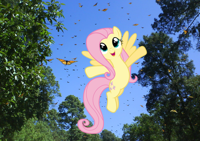 fluttershy flying with butterflies - 800×566