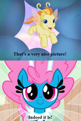 Size: 468x702 | Tagged: safe, edit, edited screencap, screencap, seabreeze, zipzee, breezie, it ain't easy being breezies, the runaway rainbow, cropped, cute, diabreezies, diazipzees, flower, g3, picture for breezies (reaction image), reaction image, text