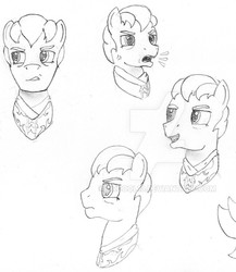 Size: 674x776 | Tagged: safe, artist:drcool13, oc, oc only, bust, cropped, facial expressions, front view, male, monochrome, practice drawing, serious, serious face, side view, solo, stallion, traditional art, vein bulge, watermark