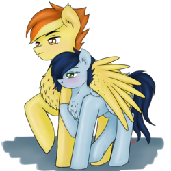 Size: 2830x2830 | Tagged: safe, artist:vinviasshine, soarin', spitfire, pegasus, pony, chest fluff, ear fluff, female, firestorm, glide, glidestorm, hug, male, rule 63, shipping, simple background, soarinfire, straight, transparent background, trotting, winghug