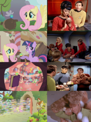 Size: 2130x2827 | Tagged: book, comparison, cropped, cute, edit, edited screencap, enterprise, fluttershy, fluttershy's cottage, golden oaks library, infestation, james t kirk, montgomery scott, parasprite, pavel chekov, reference, safe, screencap, season 1, shout out, shyabetes, side by side, space station, space station k7, spock, star trek, star trek (tos), sugarcube corner, swarm of the century, the trouble with tribbles, tree, tribbles, twiabetes, twilight's library, twilight sparkle, uhura