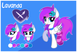 Size: 5685x3848 | Tagged: artist:sharemyshipment, clothes, female, flower, flower in hair, looking at you, mare, oc, oc:lavanda, oc only, pegasus, pony, reference sheet, safe, socks, solo, striped socks