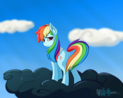 Size: 2261x1800 | Tagged: artist:wildviolet-m, cloud, cutie mark, dark cloud, female, frown, looking at you, looking back, looking back at you, pegasus, pony, rainbow dash, sad, safe, solo