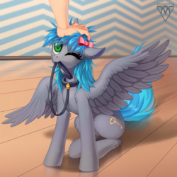 Size: 1300x1300 | Tagged: safe, artist:margony, oc, oc only, oc:key turner, human, pegasus, pony, bow, collar, colored pupils, commission, digital art, eye clipping through hair, femboy, hair bow, hand, leash, looking up, male, mouth hold, one eye closed, pet play, petting, pony pet, room, signature, sitting, solo, spread wings, stallion, wings, ych result