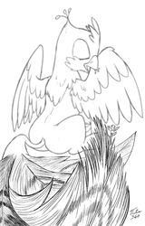 Size: 769x1200 | Tagged: safe, artist:tsitra360, oc, oc only, oc:der, oc:gyro feather, oc:gyro tech, griffon, duo, feather, griffonized, male, micro, monochrome, sketch, species swap, tail