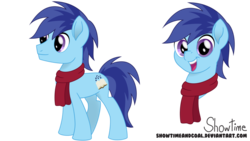 Size: 1024x576 | Tagged: safe, artist:showtimeandcoal, oc, oc only, oc:warm greetings, earth pony, pony, clothes, colt, male, movie accurate, present, reference, reference sheet, scarf, simple background, solo, stallion, transparent background