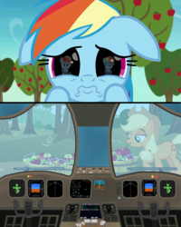 Size: 3150x3946 | Tagged: apple, applejack, apple tree, captain, clothes, cockpit, control, co-pilot, earth pony, edit, edited screencap, eye, eyes, female, flight, food, grannies gone wild, mare, not asking for trouble, pegasus, pilot, plane, pony, puppy dog eyes, rainbow dash, reflection, safe, screencap, shocked, tree, unamused, uniform, wat, window, wiper