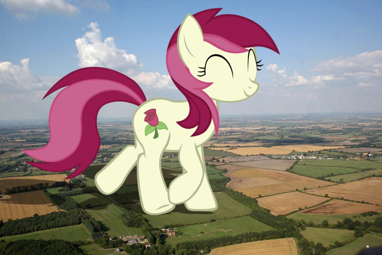 1782569 artist jerryakira79 earth pony female giant ponies in