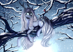 Size: 2660x1892   Tagged: safe, artist:magicbalance, oc, bird, earth pony, pony, beast, commission, female, forest, horn, mare, on tree, snow, snowfall, solo, tattoo, tree, tree branch, wild, winter