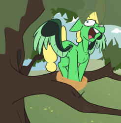 Size: 1469x1493 | Tagged: artist:omegapex, behaving like a bird, big hair, bird nest, bird pone, majestic as fuck, male, nest, nesting instinct, oc, oc only, pegasus, redraw, safe, solo, tree, tree branch, wings, yelling