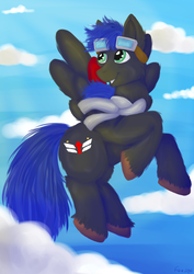 Size: 1024x1448 | Tagged: artist:fishiewishes, clothes, cloud, commission, digital, fluffy hooves, flying, goggles, male, oc, oc:silverwind, pegasus, pony, safe, scarf, sky, solo, stallion, wind