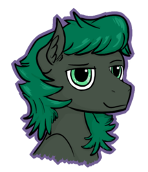 Size: 493x573 | Tagged: safe, artist:vee ness, derpibooru exclusive, oc, oc only, oc:minus, earth pony, pony, bust, colored, ear fluff, handsome, male, outline, simple background, solo, transparent background
