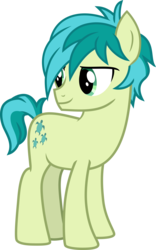 Size: 5806x9334   Tagged: safe, artist:hendro107, sandbar, earth pony, pony, non-compete clause, absurd resolution, male, simple background, solo, transparent background, vector