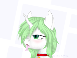 Size: 717x543 | Tagged: safe, artist:silviawing, oc, oc only, oc:kika, changeling, albino changeling, changeling oc, collar, green changeling, green hair