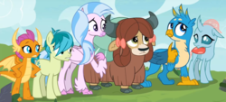 Size: 1537x697 | Tagged: safe, screencap, gallus, ocellus, sandbar, silverstream, smolder, yona, changedling, changeling, classical hippogriff, dragon, earth pony, griffon, hippogriff, pony, yak, non-compete clause, bow, cloven hooves, dragoness, female, hair bow, male, monkey swings, student six, teenager