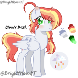 Size: 800x800 | Tagged: safe, artist:jxst-roch, oc, oc only, oc:cloudy dash, pegasus, pony, female, mare, offspring, parent:rainbow dash, parent:soarin', parents:soarindash, reference sheet, simple background, solo, transparent background
