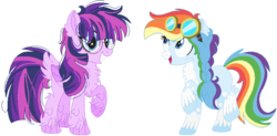 Size: 806x395 | Tagged: alternate design, artist:bezziie, braid, earth pony, earth pony rainbow dash, g5, glasses, goggles, pegasus, pegasus twilight sparkle, pony, rainbow dash, rainbow dash (g5), safe, simple background, transparent background, twilight sparkle, twilight sparkle (g5)