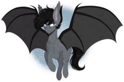 Size: 2421x1605 | Tagged: artist:shadow-nights, bat pony, bat pony oc, chest fluff, male, oc, oc:juneau, pony, safe, simple background, solo, stallion, transparent background