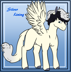 Size: 4720x4800 | Tagged: artist:midnight-drip, hybrid, interspecies offspring, male, oc, oc:silver lining, offspring, parent:songbird serenade, parent:storm king, pegasus, pony, safe, solo, stallion