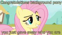 Size: 1600x900 | Tagged: safe, edit, edited screencap, screencap, fluttershy, pegasus, pony, putting your hoof down, dreamworks face, female, flutterbitch, image macro, mare, meme, new fluttershy, raised eyebrow, reaction image, smug, solo, trollface