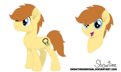 Size: 7554x4500 | Tagged: safe, artist:showtimeandcoal, oc, oc only, oc:tech, oc:tech magic, earth pony, pony, absurd resolution, colt, commission, digital art, head shot, male, movie accurate, reference, reference sheet, simple background, solo, stallion, style, transparent background, ych result
