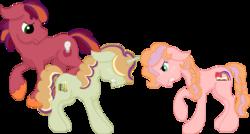 Size: 1040x559 | Tagged: safe, artist:summersketch-mlp, oc, oc only, oc:discovery, oc:honeycrisp, oc:somerset sour cider, earth pony, pony, unicorn, kindverse, offspring, parent:big macintosh, parent:cheerilee, parent:sugar belle, parents:cheerimac, parents:sugarmac, simple background, transparent background
