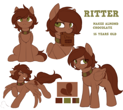 Size: 2114x1891 | Tagged: safe, artist:ritter, oc, oc only, oc:ritter, pegasus, pony, collar, cute, cutie mark, female, ocbetes, reference sheet, simple background, teeth, wings